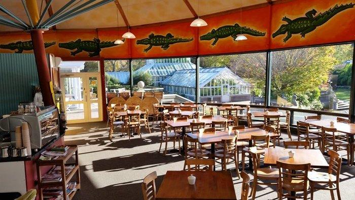 rsz_croqueodile cafe inside