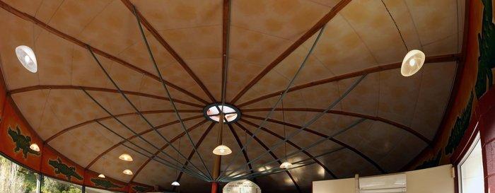rsz_croquodile_roof__stitchedalpha