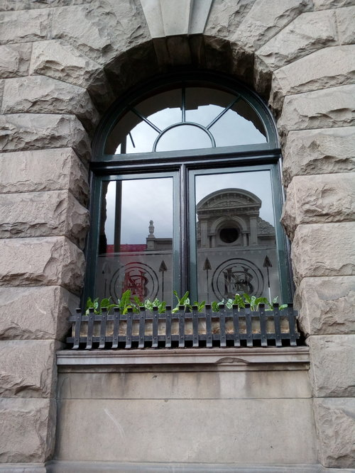 rsz_nb_beet_window