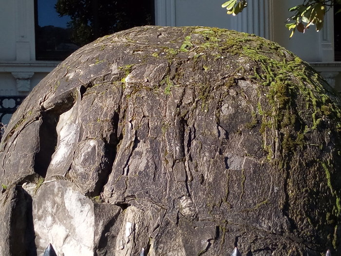 rsz_museum_native_garden_boulder_detail_02