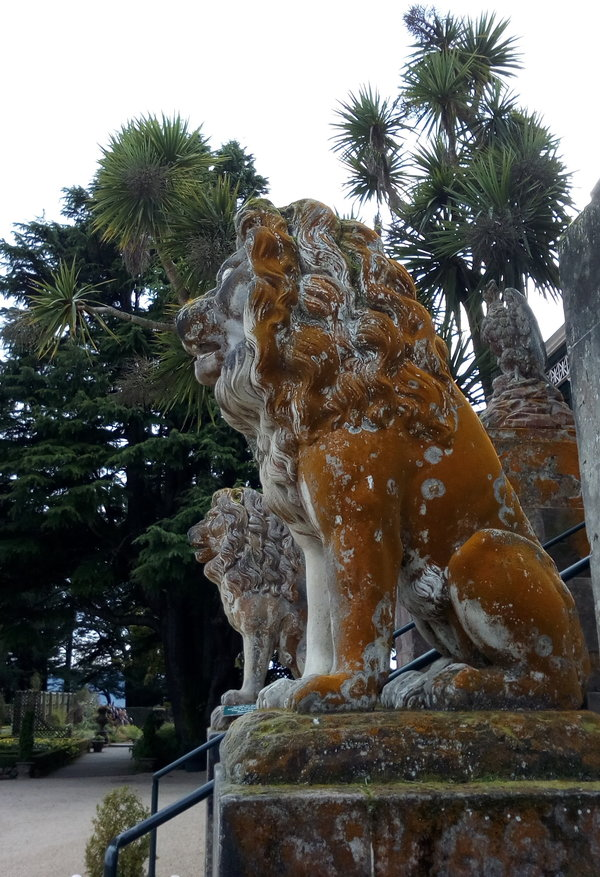 rsz_larnach_lion_side