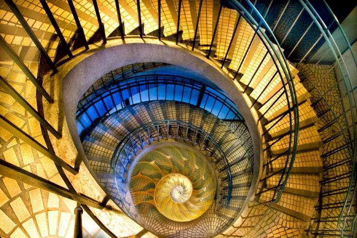 Harold Davis -Spirals