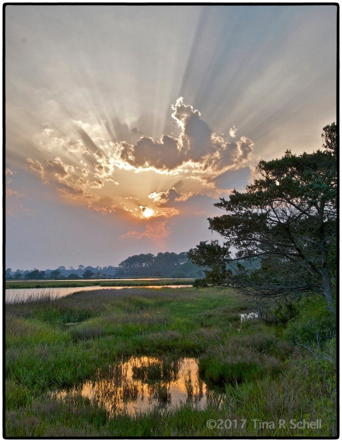 SUNSET, KIAWAH ISLAND