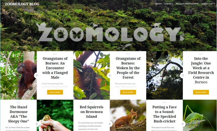 Zoomology Homepage
