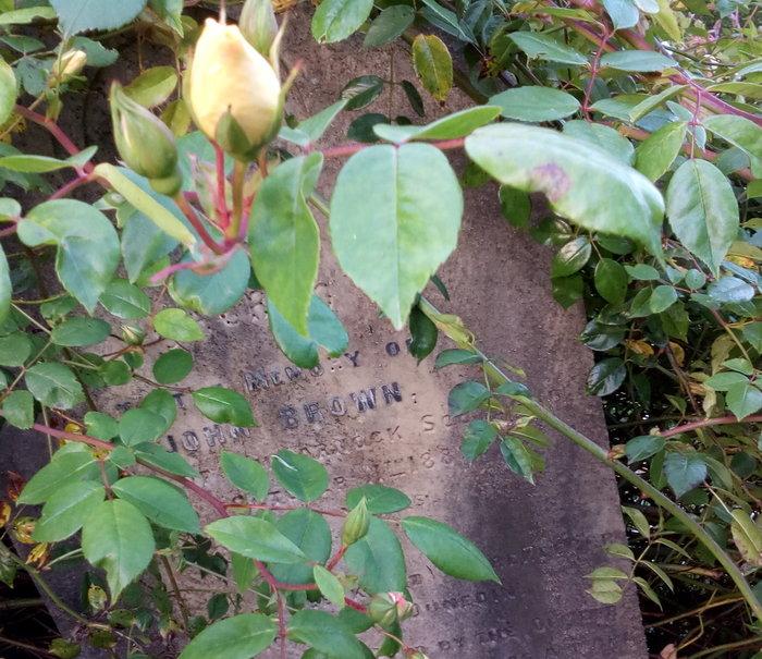 rsz_cemetery_name