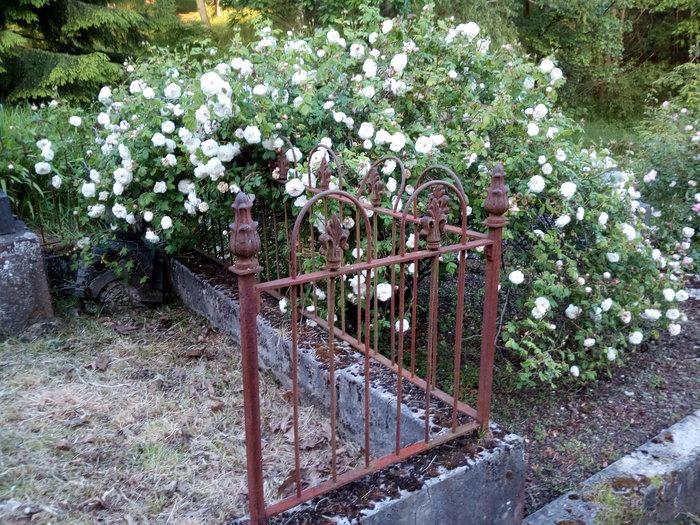 rsz_dun_nth_cemetery_09