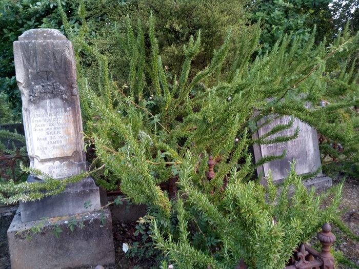 rsz_dun_nth_cemetery_12