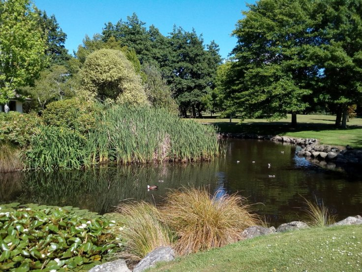 rsz_invermay_pond_03