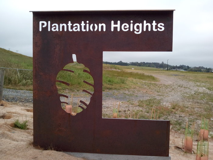 rsz_plantation_heights_04