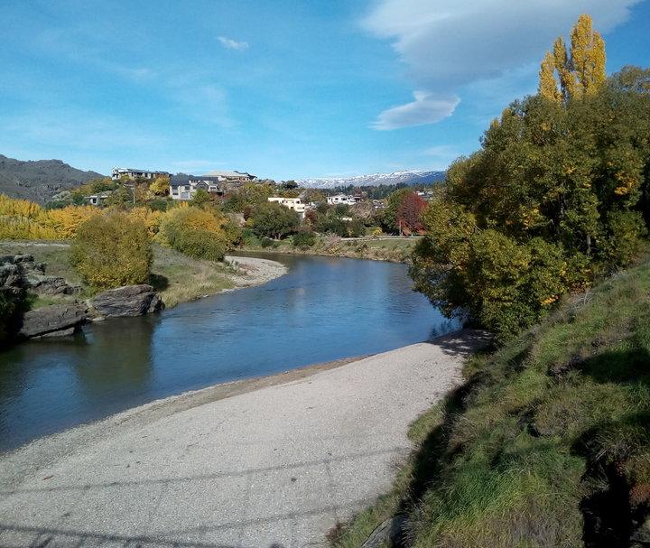 rsz_shaky_bridge_03