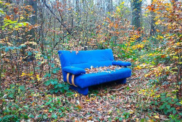 a-0057-sofa-wald-im-gruenen1