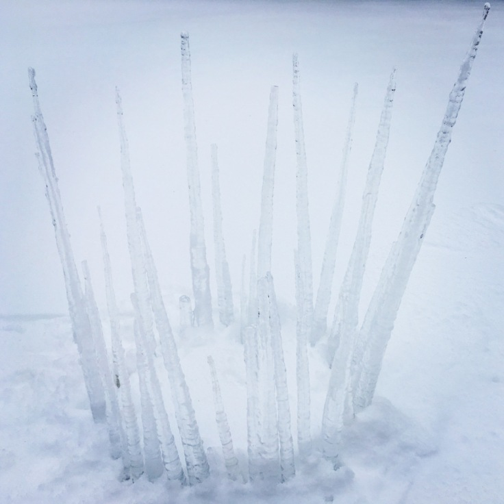 icicle_crown