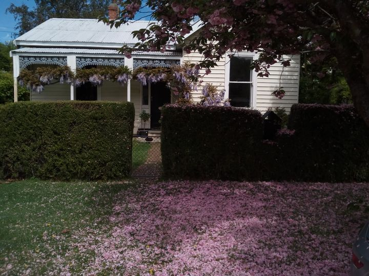 arrowtown_spring_01