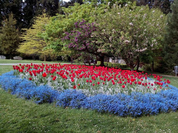 qtn_gardens_flowers_04