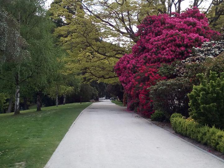 queenstown_gardens_way_01