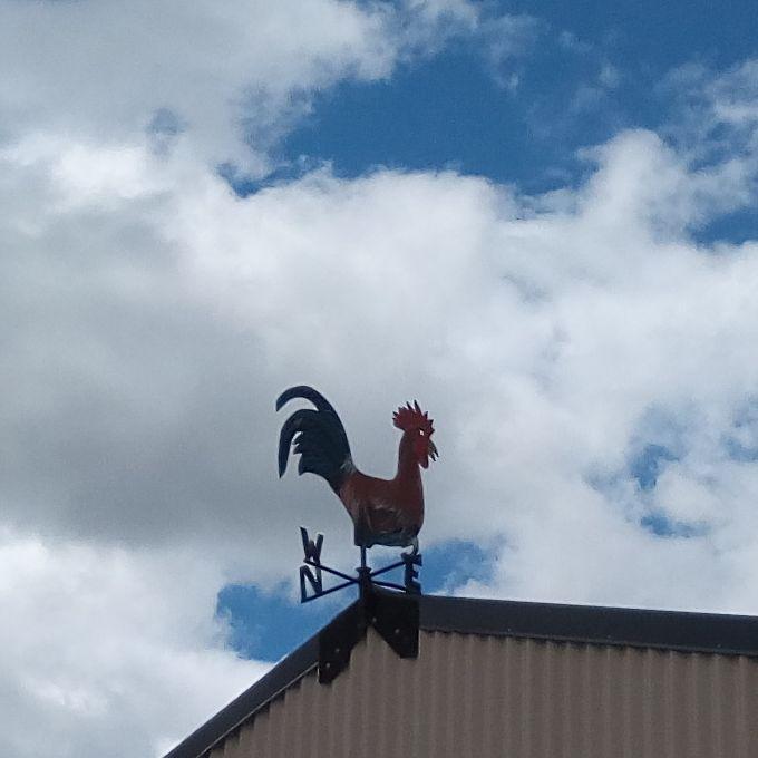 gore_rooster_vane_02