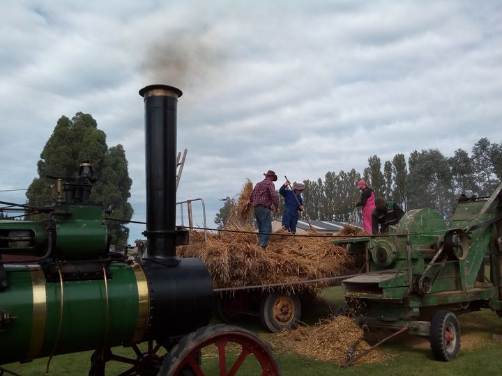 brydone_steam_rally_07