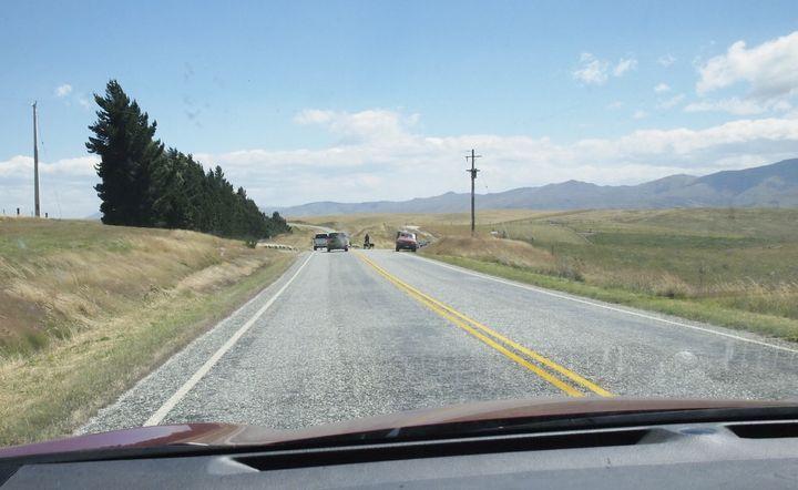 sheep_road_01