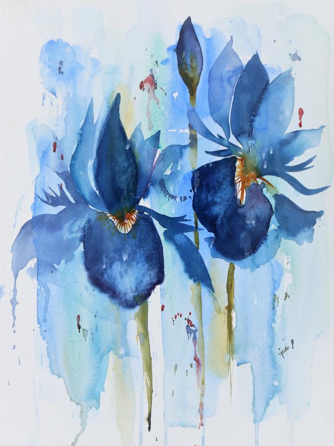 jodi_blue-irises-watercolor