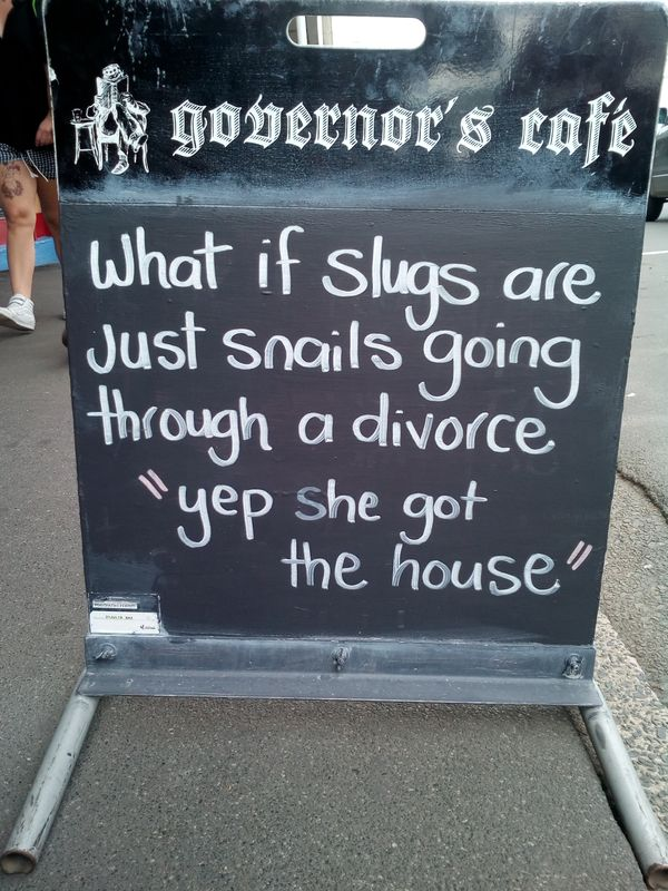 slug_snail_divorce_dun_600w