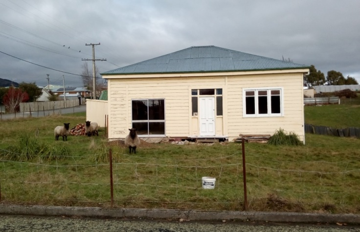 tapanui_corner_house_sheep