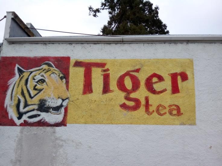 hampden_tiger_tea_01
