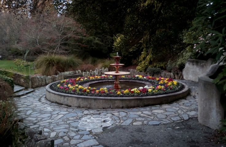 polyanthus_fountain_01
