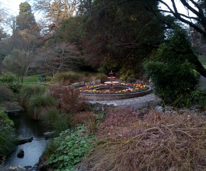 polyanthus_fountain_02
