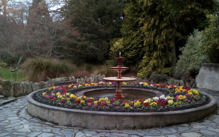 polyanthus_fountain_03