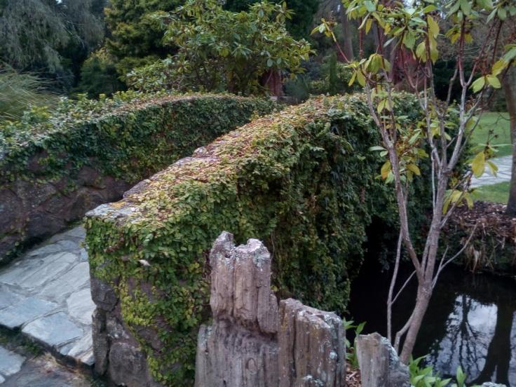 polyanthus_fountain_04