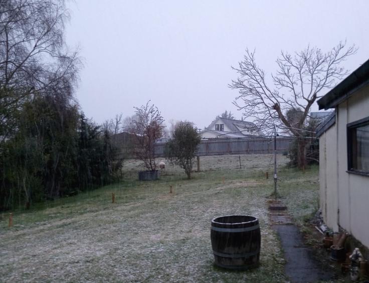 snowing_in_tapanui_25Sept2019