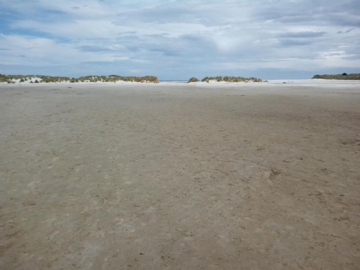 island_park_estuary_02_1000w