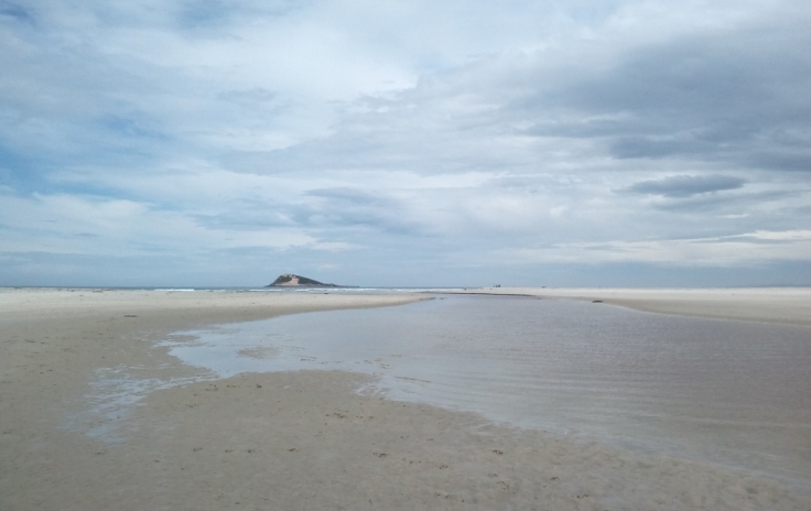 island_park_estuary_05_1000w
