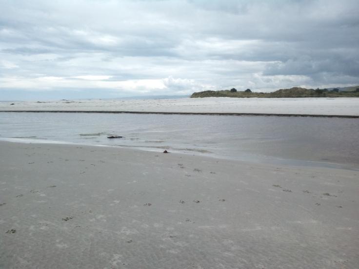 island_park_estuary_06_1000w