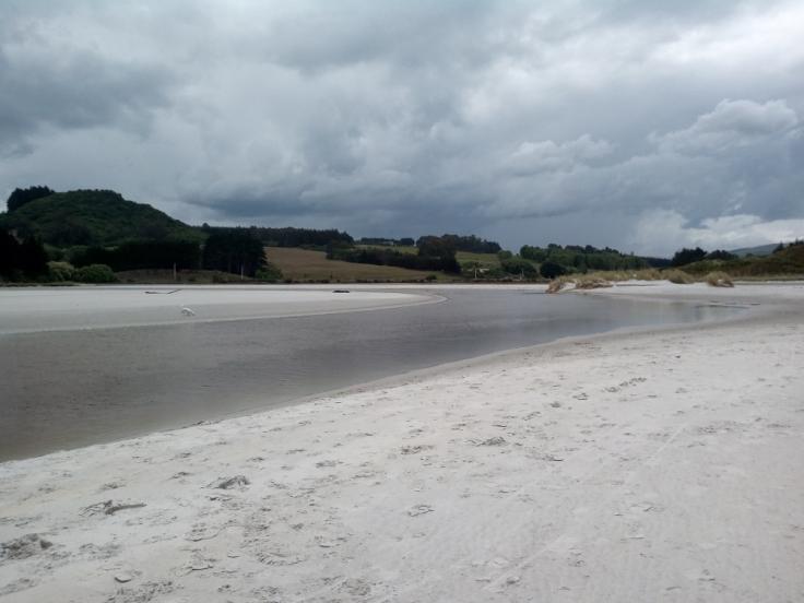 island_park_estuary_08_1000w