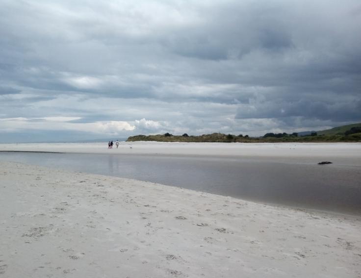 island_park_estuary_1000w