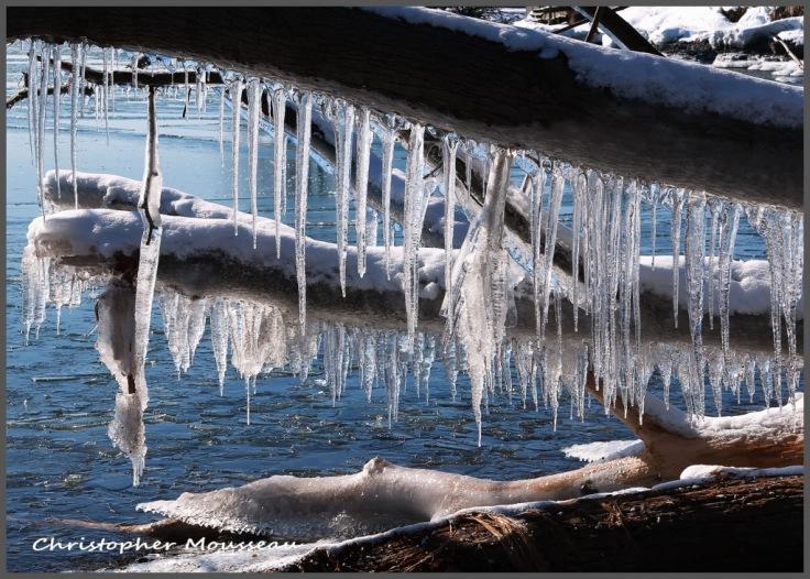 lake-ontario-icicles-14feb2020-c