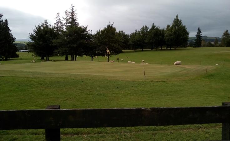 tapanui_golf_course_02
