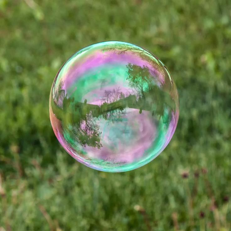 mp_bubble1_5may19_blog