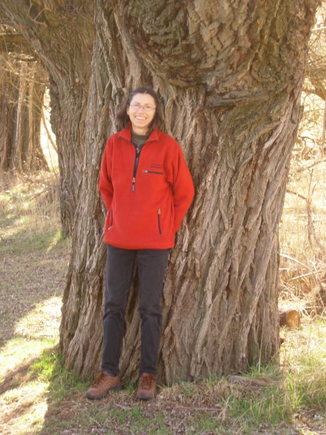 trees_queenstown_02